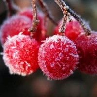 Снеженика - песня про зиму