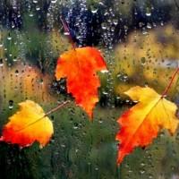 Танец капелек - песня про осень