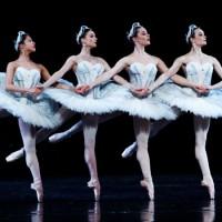 Танец маленьких лебедей. Лебединое озеро - Чайковский П.И.